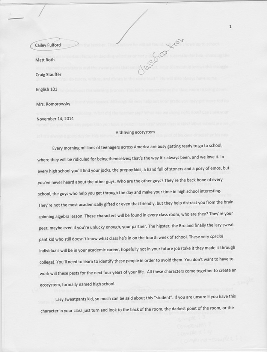 rhetorical patterns english 101 102 portfolio classification essay